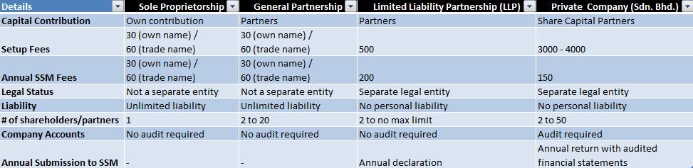company-setup-comparison